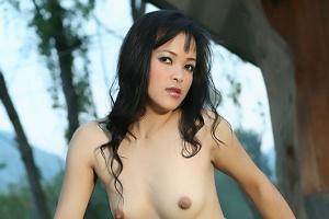 Rose Pathra
