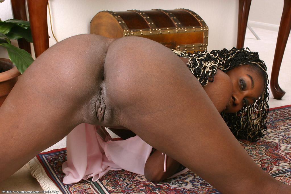 Celon  Exotic  East Babes-6658