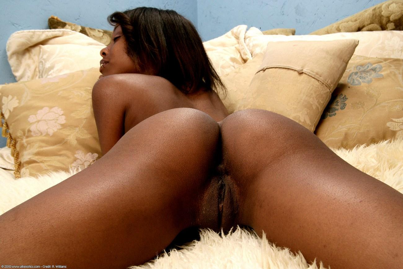 Carmel » Exotic » East Babes